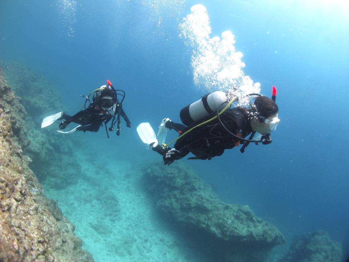 石垣右島体験ダイビング